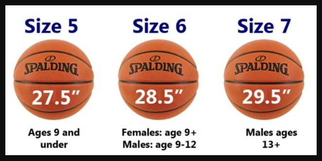 Ukuran-Dan-Berat-Bola-Basket-Standar-Nasional-Dan-Internasional