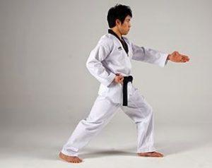 sabetan taekwondo