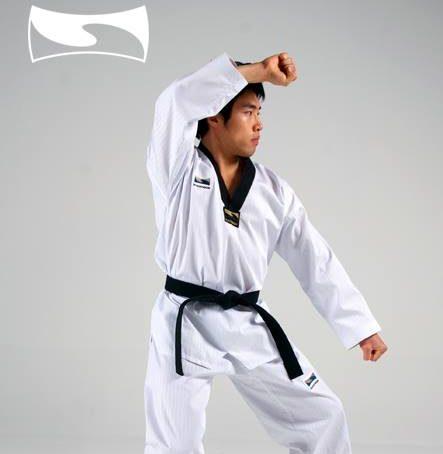 tangkisan taekwondo